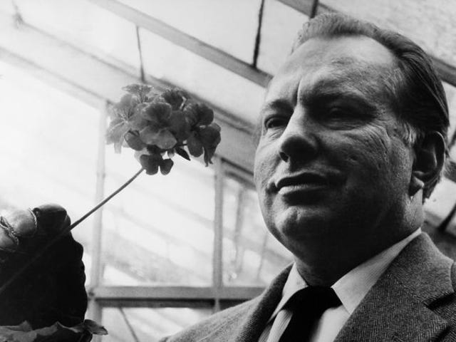 """<a href=""""https://aux.avclub.com/explore-l-ron-hubbard-s-early-days-of-black-magic-and-1798288228"""" data-id="""""""" onClick=""""window.ga('send', 'event', 'Permalink page click', 'Permalink page click - post header', 'standard');"""">Explore L. Ron Hubbard's early days of black magic and cuckolding</a>"""