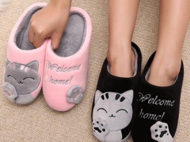25% Off Store Wide pada Semua Mainan Kucing dari Pemilik Cat