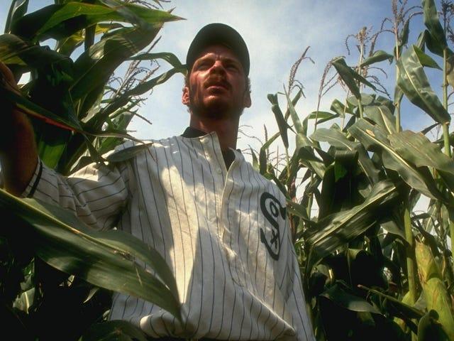 美国棒球大联盟将于2020年在Field Of Dreams举办比赛