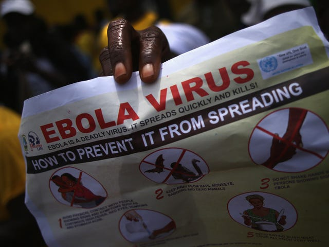 The Current Ebola Outbreak in Africa has Become the Second Largest in History