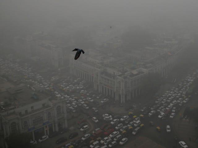 Forstyrrende billeder Vis omfanget af Delhis eksplosionsfarlige nødsituation