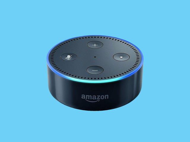 É a sua primeira chance desde as férias para salvar no Echo Dot da Amazon