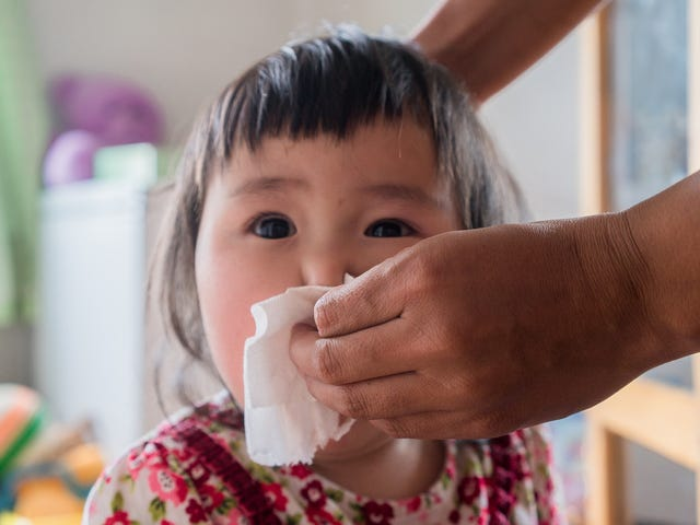 Baby Wipes Don't Cause Food Allergies
