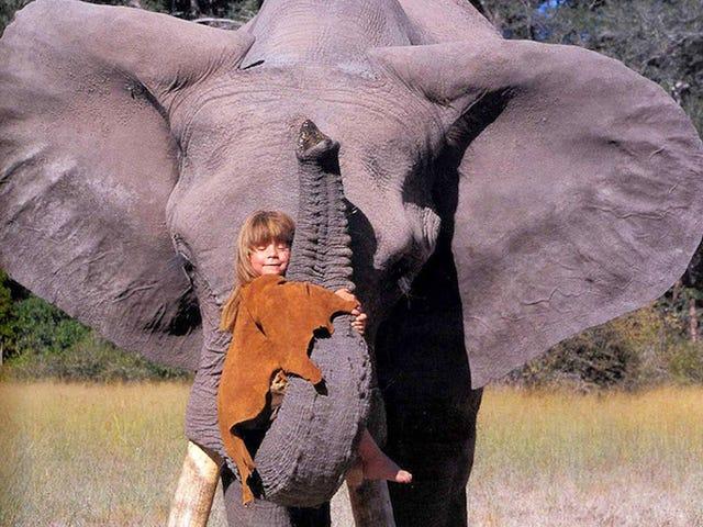 My husband and I both love animals, especially elephants