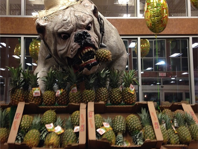 Georgia Grocery Store Terrorized By Giant Nightmare Bulldog