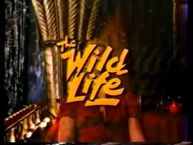 野生动物(1984)