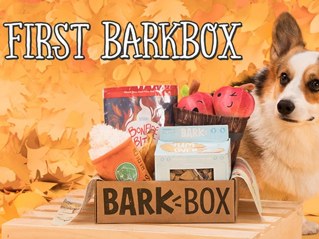 Get Your First BarkBox For Just $5 And Share Monthly Toys & Treats With Your Dog
