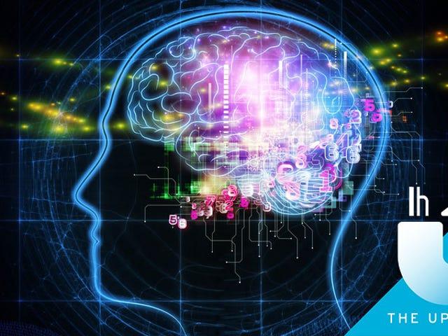 Cara Mencegah Pikiran Anda Daripada Menjejali, Dengan Robert Lustig