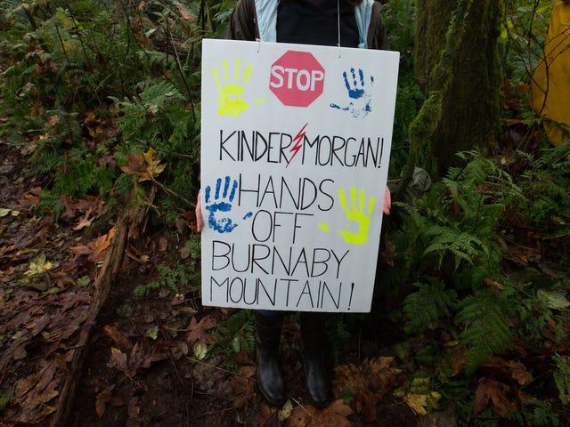 Indigene Aktivisten haben gerade einen riesigen Sieg in der Kanadischen Pipeline-Schlacht erzielt