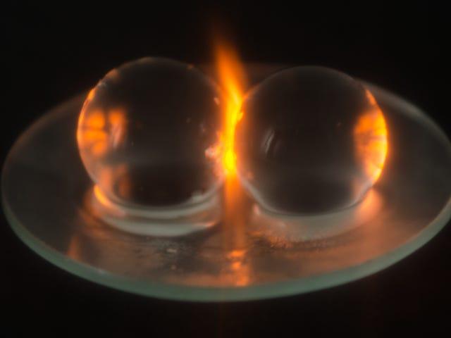Các nhà khoa học sản xuất nghiên cứu nghiêm ngặt về lý do tại sao nho Spark trong lò vi sóng