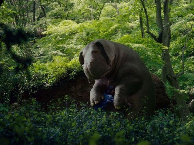 How Okja Made Us Care So Damn Much About a CG Superpig