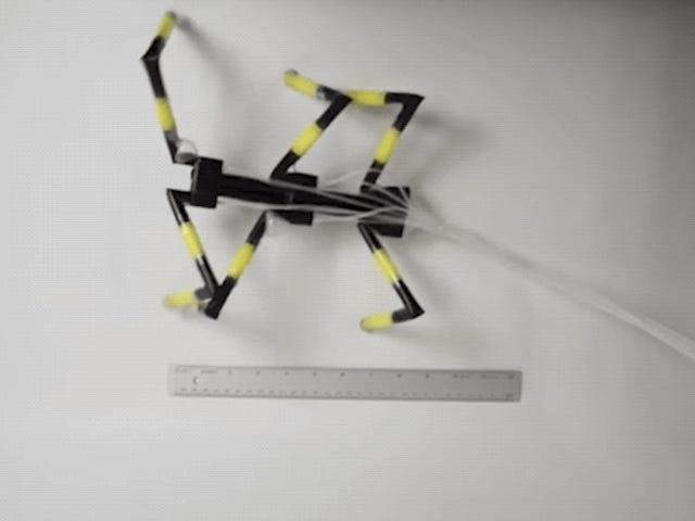 ये Freaky रोबोट पीने के स्ट्रॉ से निर्मित और मकड़ियों से प्रेरित हो गए थे