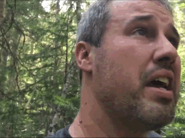 En pilot overlever en flyulykke i Quebec-ørkenen og dokumenterer på video, hvad der skete indtil hans redning