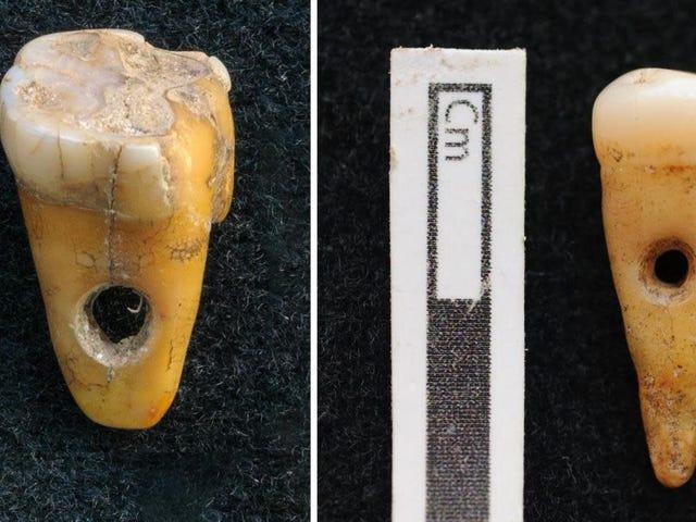 Người Thổ thời tiền sử đeo răng người như đồ trang sức, Khám phá hiếm hoi tiết lộ