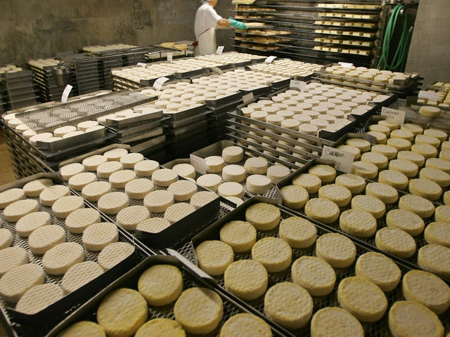 Some Dinner Party Guests Have Reportedly Been Wrapping MDMA in Cheese and Calling it 'Brieing'
