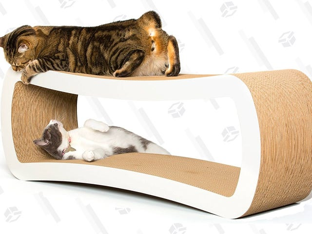 Напад на Petfusion Cat Scratch Lounger Deal