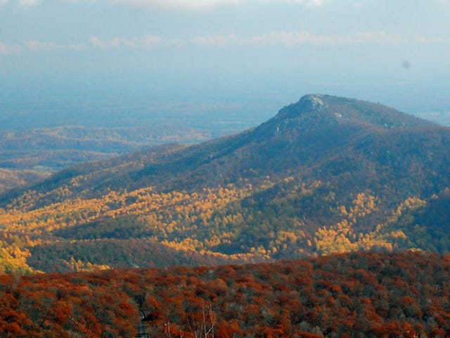 The Best National Parks to Visit for Spectacular Fall Foliage
