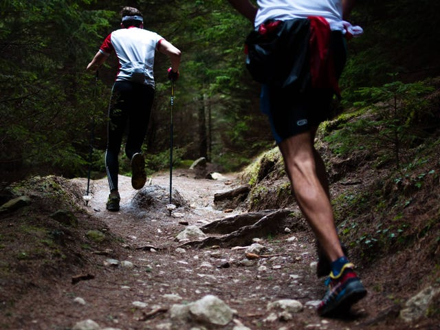 Why You Should Do Some of Your Running on Trails