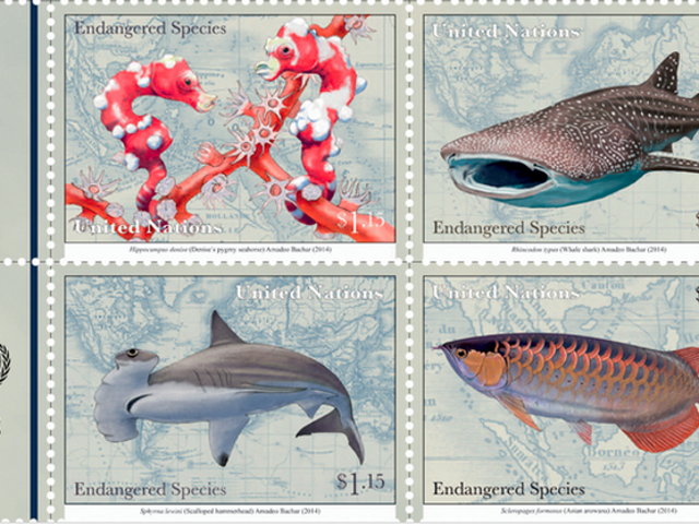 The UN Has Its Own Postal System And You Can Buy Its Awesome Stamps