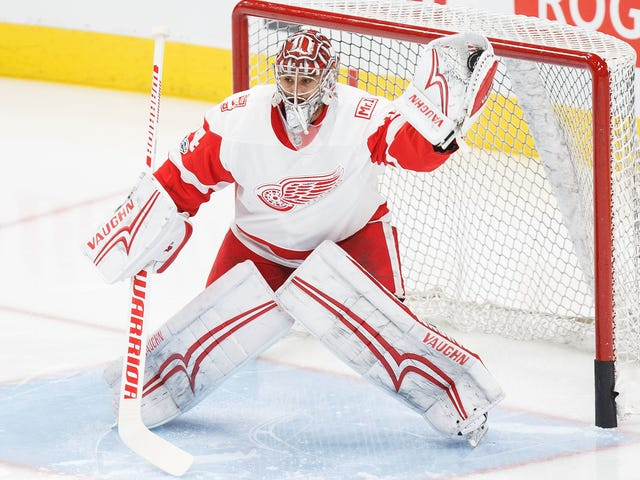 Red Wings Trade Former Franchise Goalie For Melted Ice