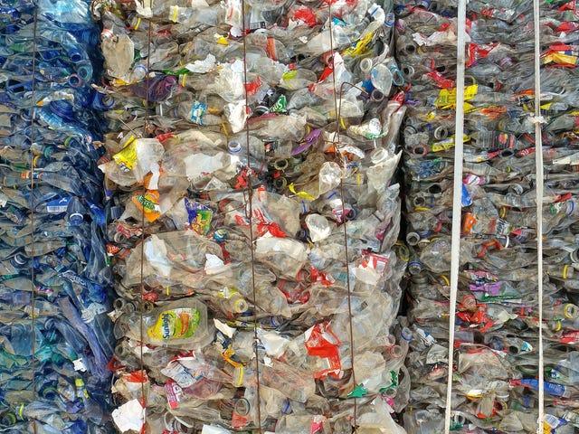China's Plastic Waste Ban wird ein riesiges Problem für die Welt schaffen