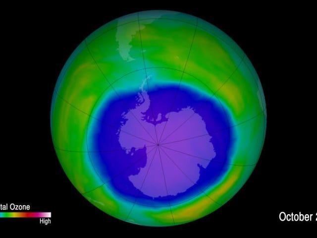 지구의 오존층을 절약하는 것이 예상보다 훨씬 나아졌습니다.