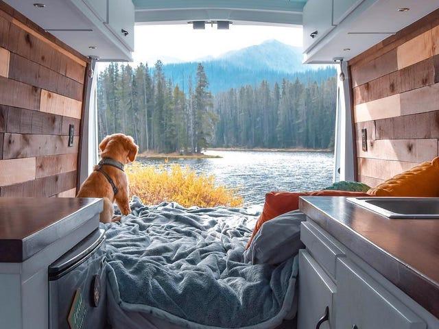 Filo Sprinter DIY Camper Dönüşümü