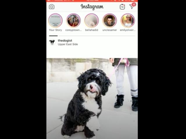 Di mana Anda Selama Bencana Instagram Hebat tahun 2018?