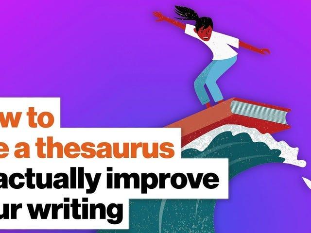 Cara Menggunakan Tesaurus dengan Benar, Menurut Martin Amis