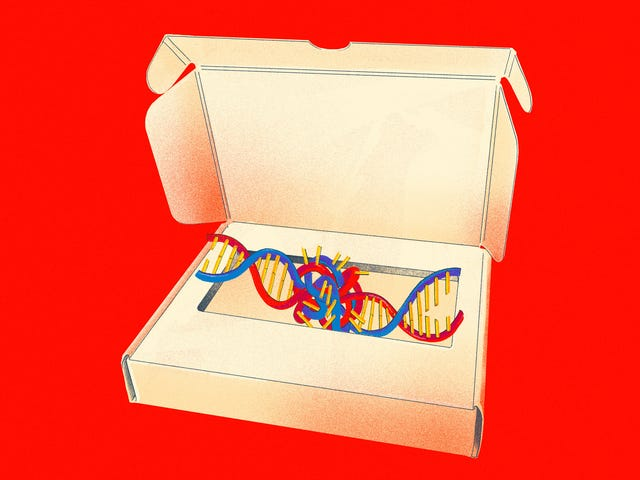 How DNA Testing Botched My Family's Heritage, and Probably Yours, Too