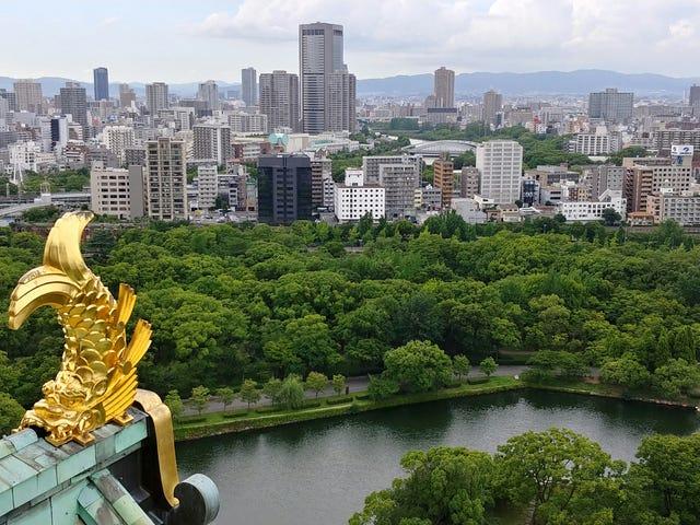 Osaka Castle Rooftop. Osaka, Japan
