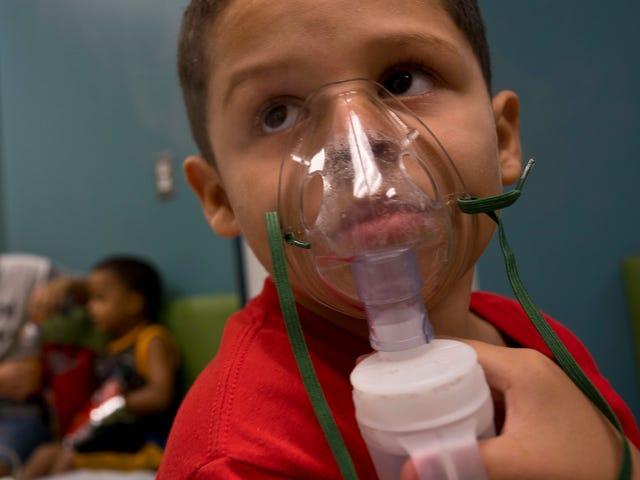 Did Hurricane Maria Worsen Puerto Rico's Asthma Crisis?