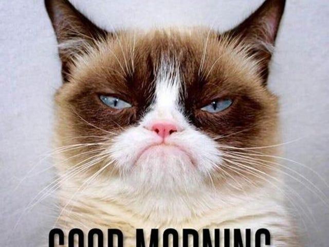 Hmph. Good morning.