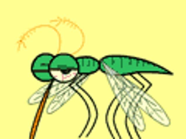 การมีชีวิตเหมือนแมลงไม่ใช่เรื่องง่าย