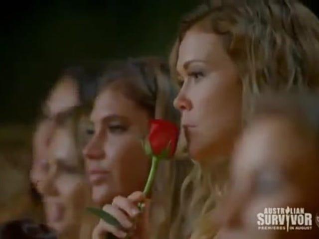 Contestant på The Bachelor Australia er så begejstret for at få en rose, at hun spiser den forfærdelige ting