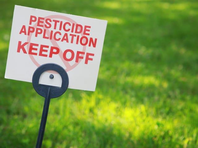 Cara Kejahatan untuk Memelihara Anjing Off Your Lawn
