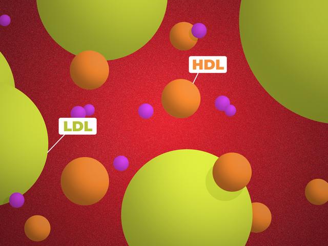 Lo que realmente significan tus números de colesterol
