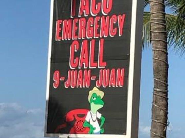 Taco 911