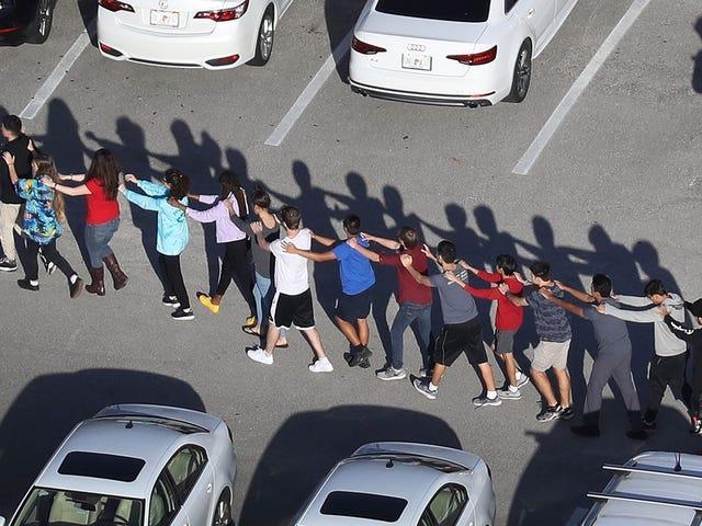 폭스 뉴스 호스트 미국의 최신 학교 촬영에보고하면서 '너무 안전'으로 AR - 15 소총을 설명합니다