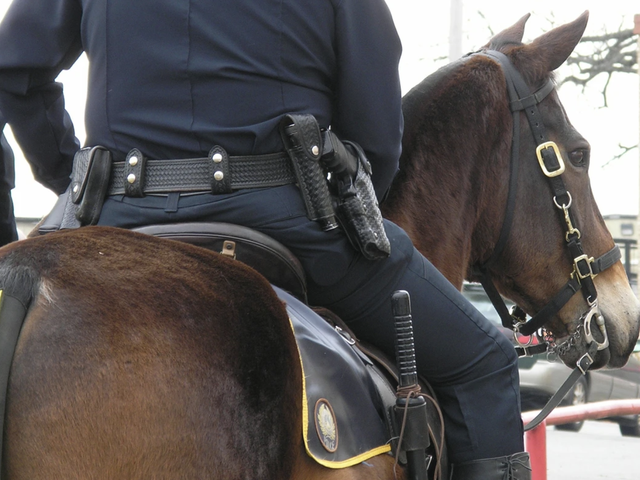 그렇습니다. 기마 경찰이 길을 안내 받게 된 수갑을 쓴 흑인의 이미지는 실재적이며 텍사스 경찰은 미안합니다.