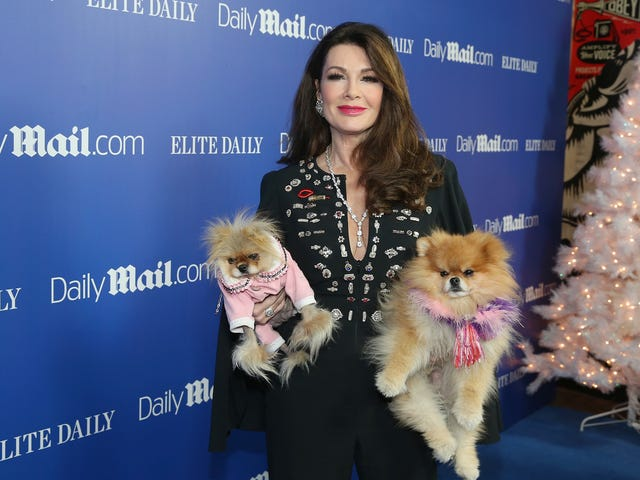 Lisa Vanderpump Saved the Dogs!!!!!!!!!