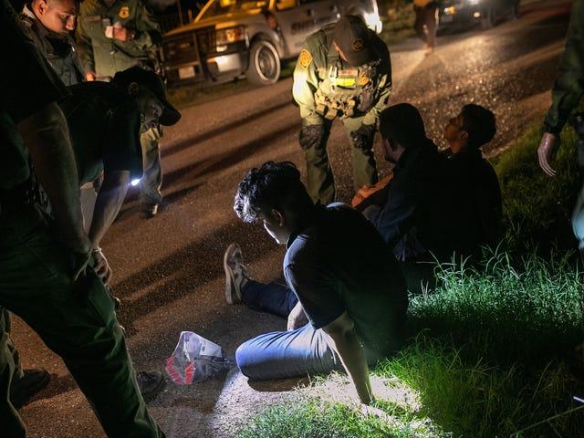 La règle du MJ donne le feu vert pour collecter l'ADN des demandeurs d'asile et des migrants détenus