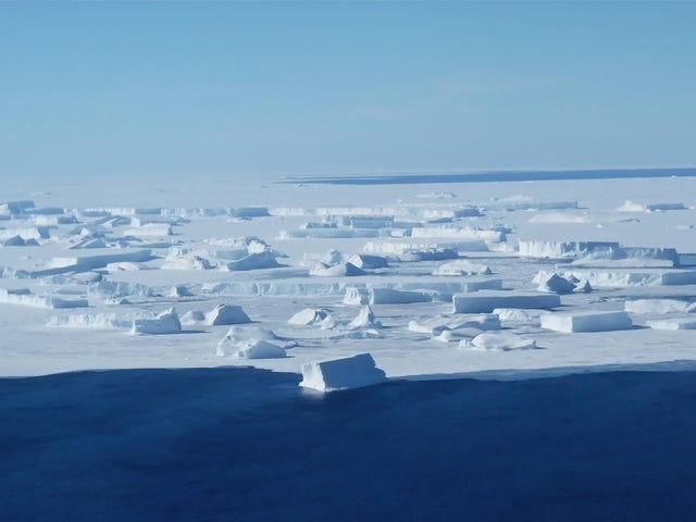 Allons tous nous calmer et comprendre ce panache antarctique