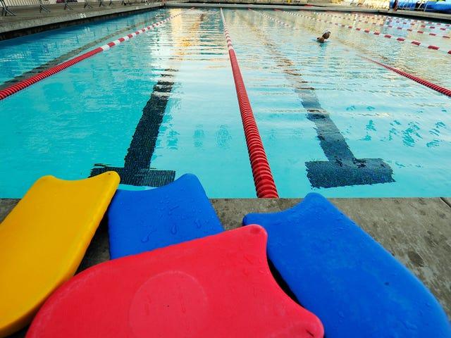 수영장에서 똥을 멈춰주세요