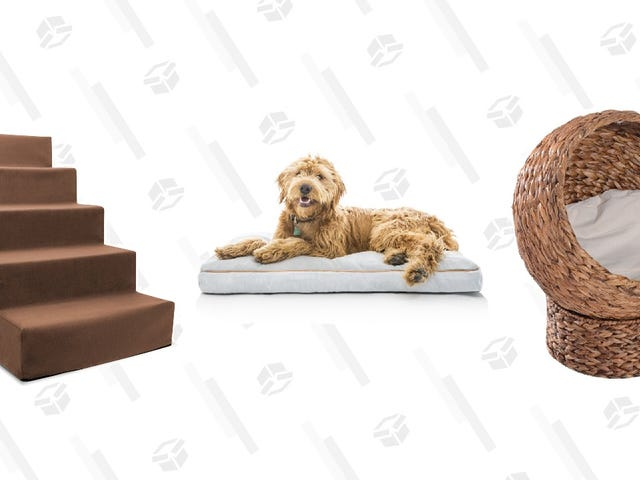 Wayfair's Pet Furniture Sale Brings Comfort to Your Floof and Style to Your Home