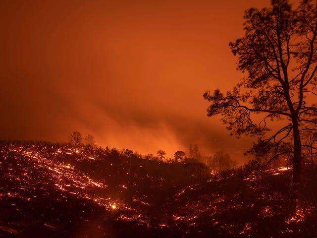 加州最大的公用事业公司因野火风险切断80万用户的电源