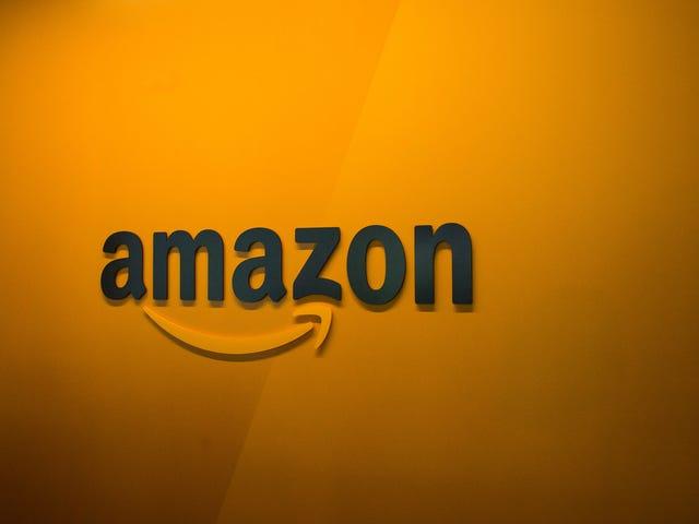 Amazon markedsfører ansigtsgenkendelse til politiafdelinger, der er samarbejdet med Ring: Rapport