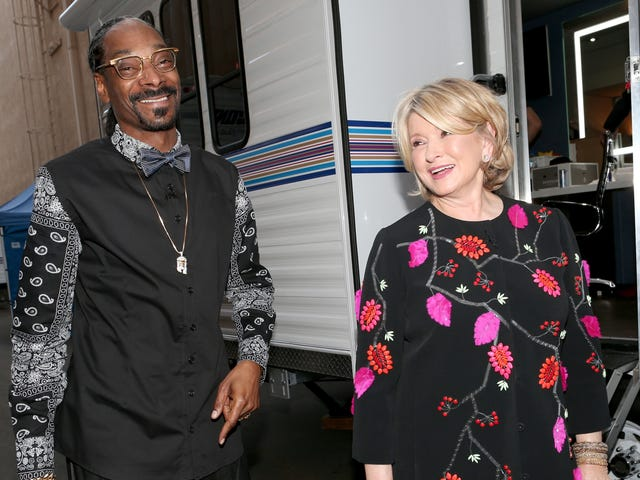 Martha Stewart and Snoop Became BFFs After He Accidentally Got Her Stoned on National Television