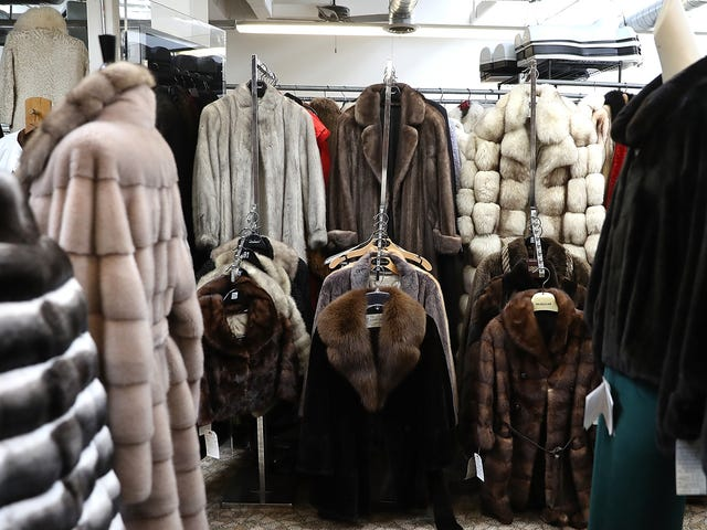 New Bill Seeks to Ban Fur Sales in New York By 2021
