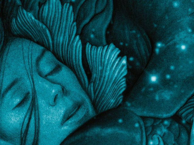 <i>The Shape of Water</i> Novel Does Much, Much More Than Adapt the Movie